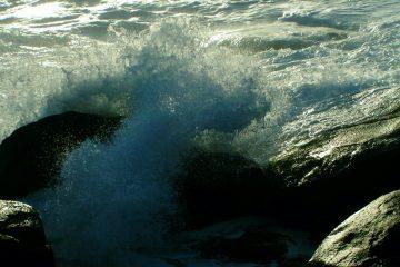 amo el mar